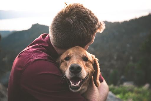 doggy cuddle